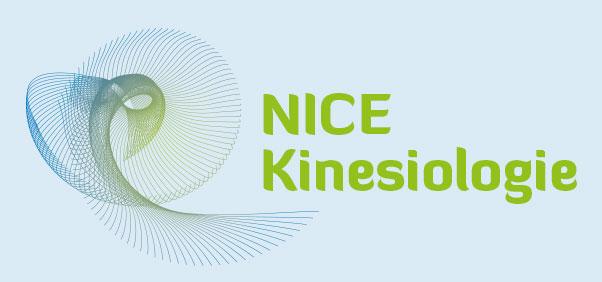 NICE Kinesiologie – Neuorganisation, Integration und Stärkung des Nervensystems – Peter Erikson und Klaus Wienert Logo